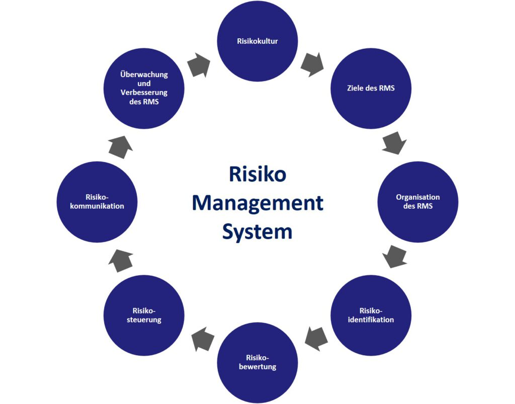 Risiko Management System (RMS)